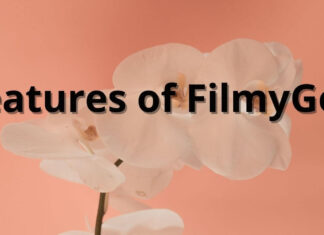 Features of FilmyGod